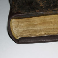 Repertorium alphabeticum sententiarum … Lione 1528-1529